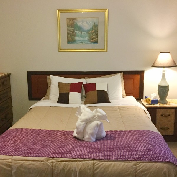 Junior Suite with Extra Double Bed