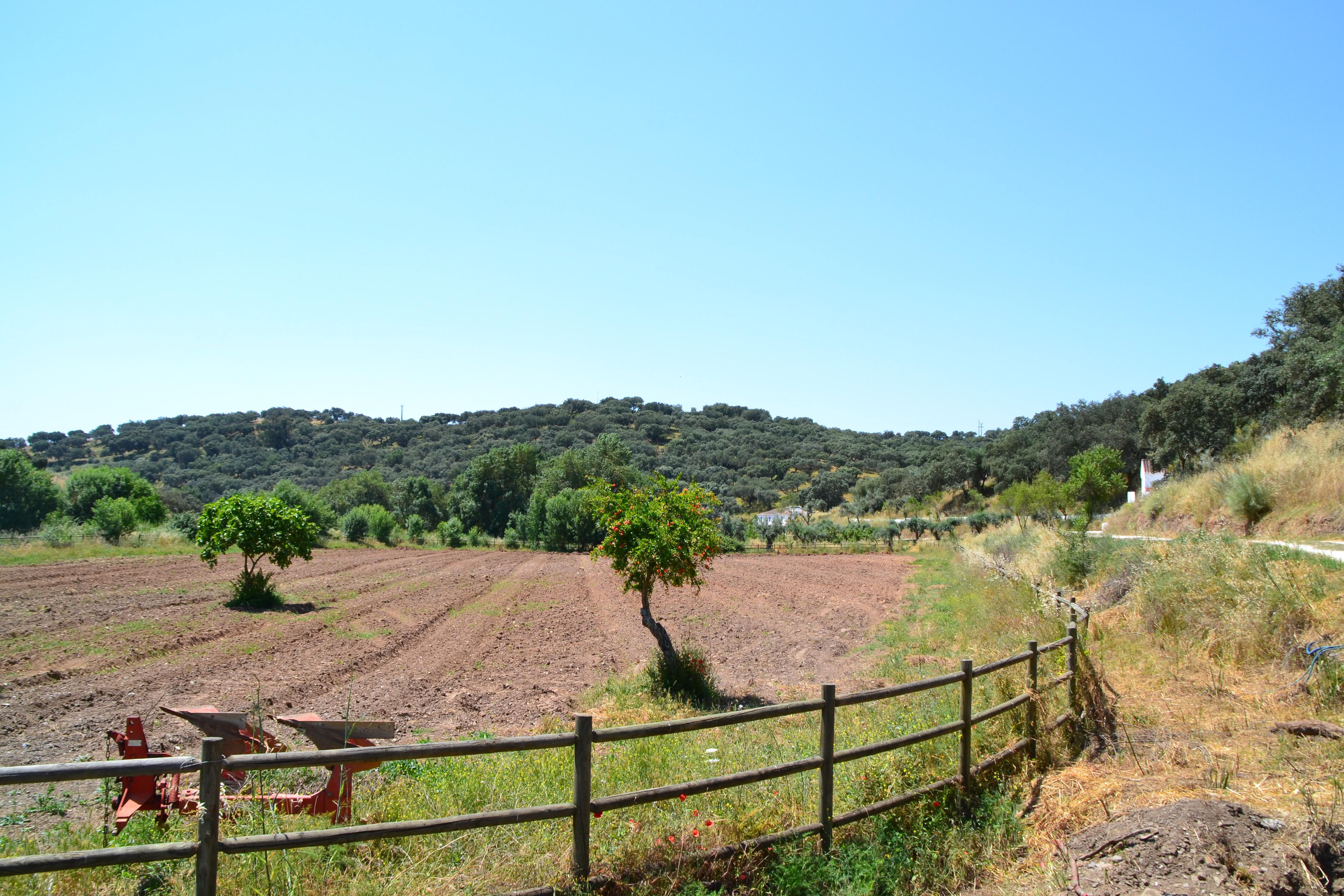 PERMACULTURA: Cuidar da terra, das pessoas e do futuro