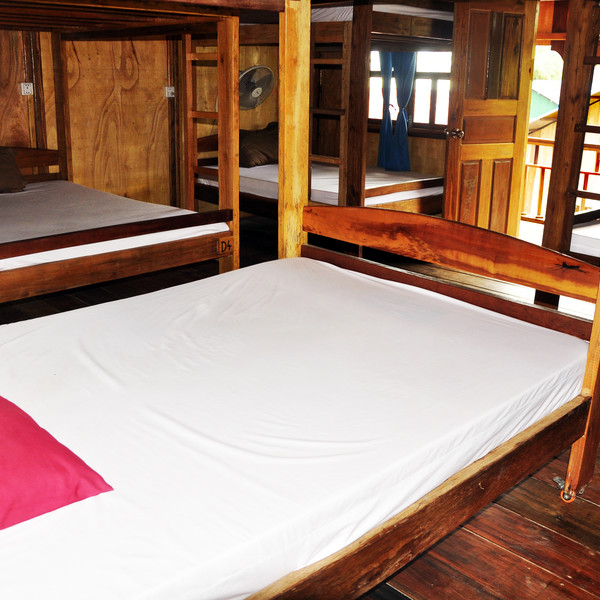 Bunk Bed in Mixed Dormitory Room with Garden View